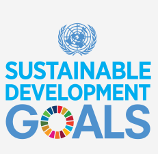 Regional engagement on the UN SDGs