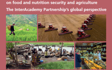 IAP publish global perspective on food and nutrition security and agriculture